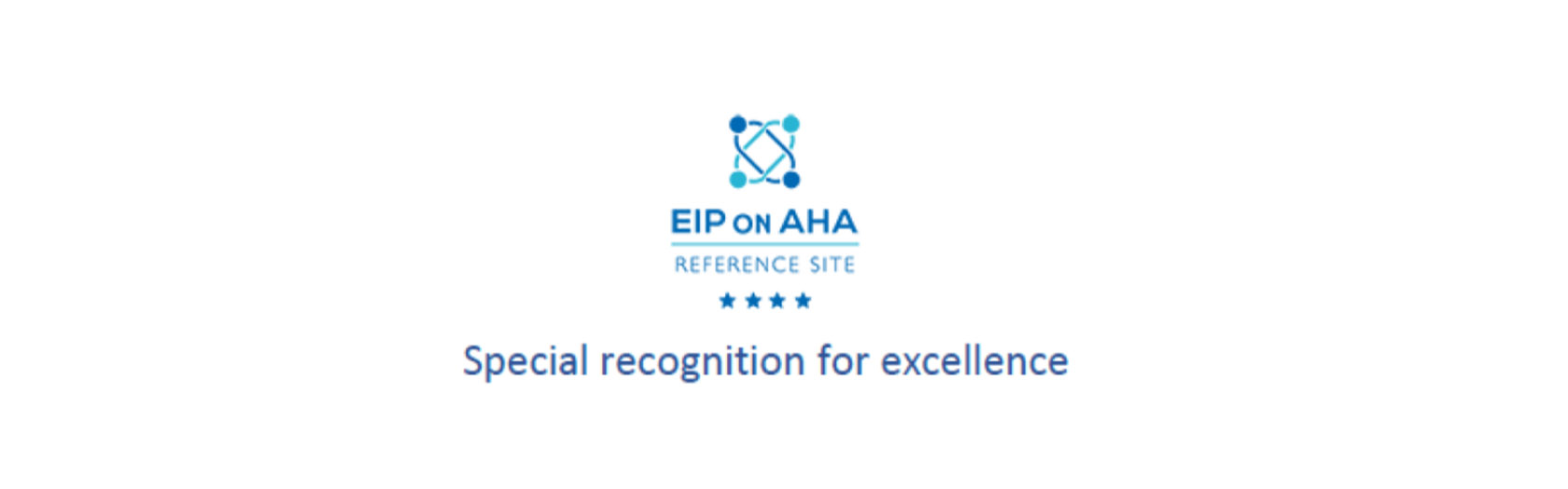 Basque Reference Site 4 Stars - Special Recognition for Excellence
